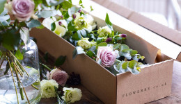 Free Box of Flowers